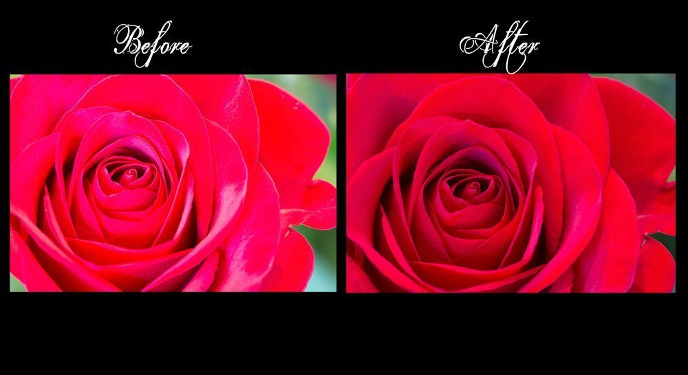 White Balance your Camera – Let's fix those Reds