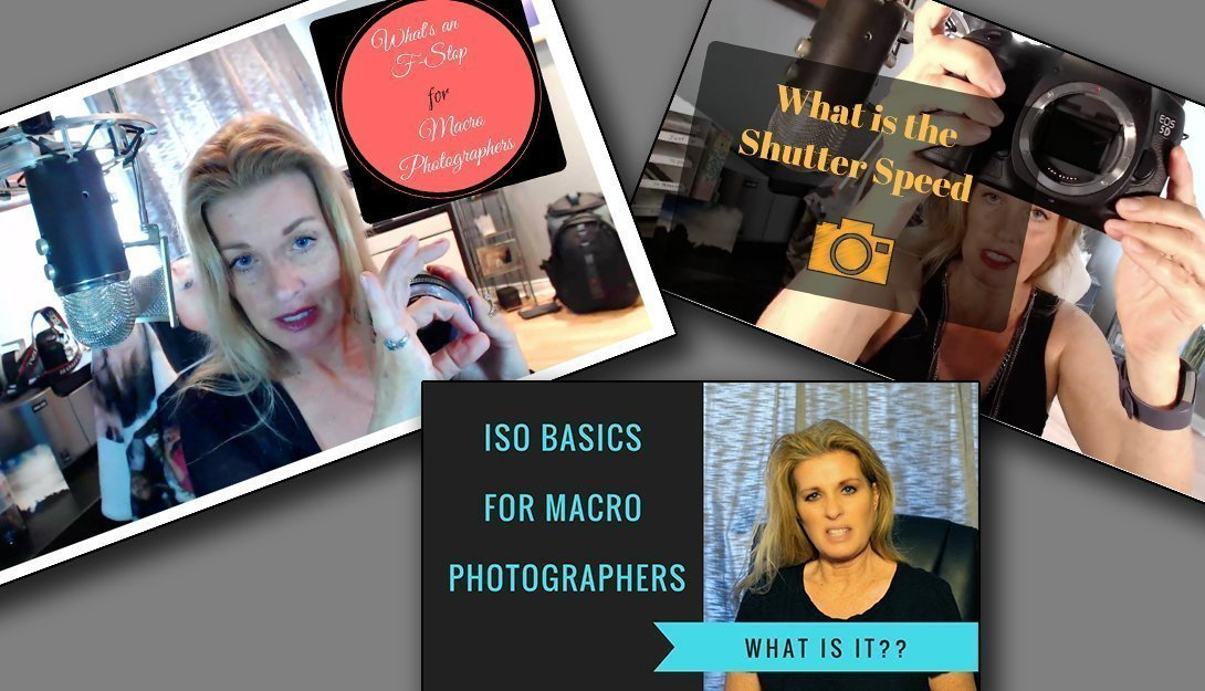 what is the f-stop, shutter speed & Iso for photography