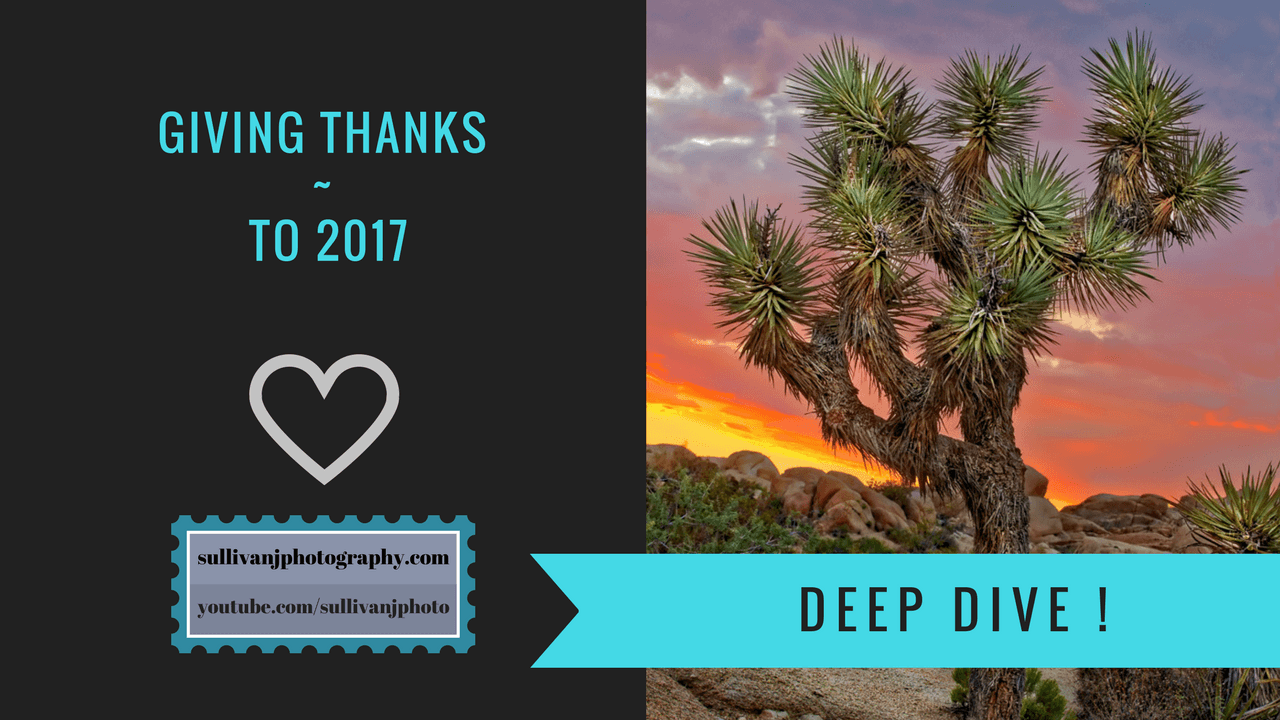Thanksgiving, 2017, Thanking you,