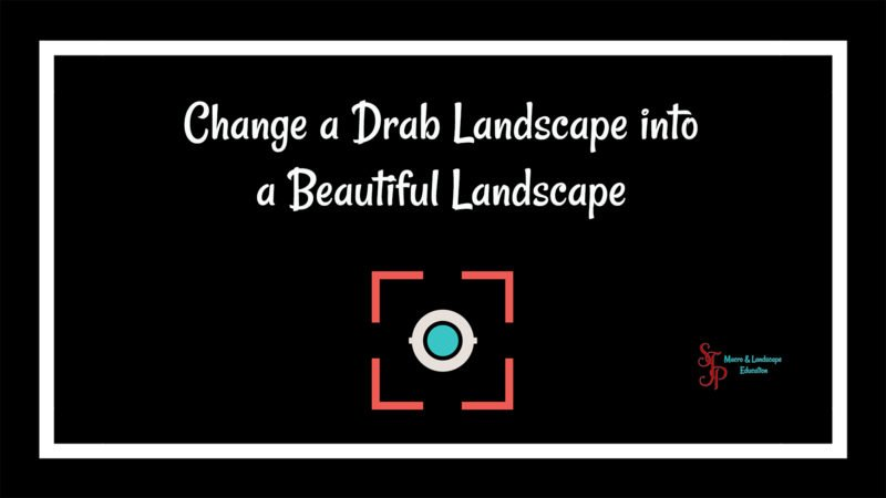 DrabLandscapeToBeautiful