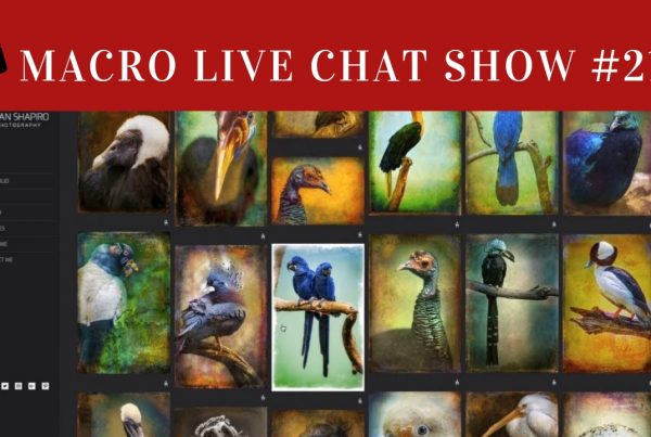 alan shapiro, macro live chat show,
