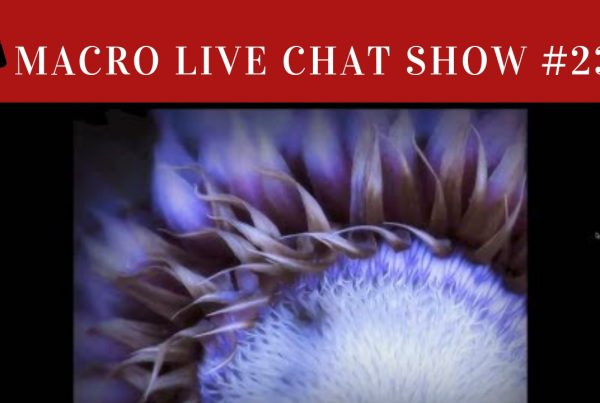 shari miller, macro live chat show 23