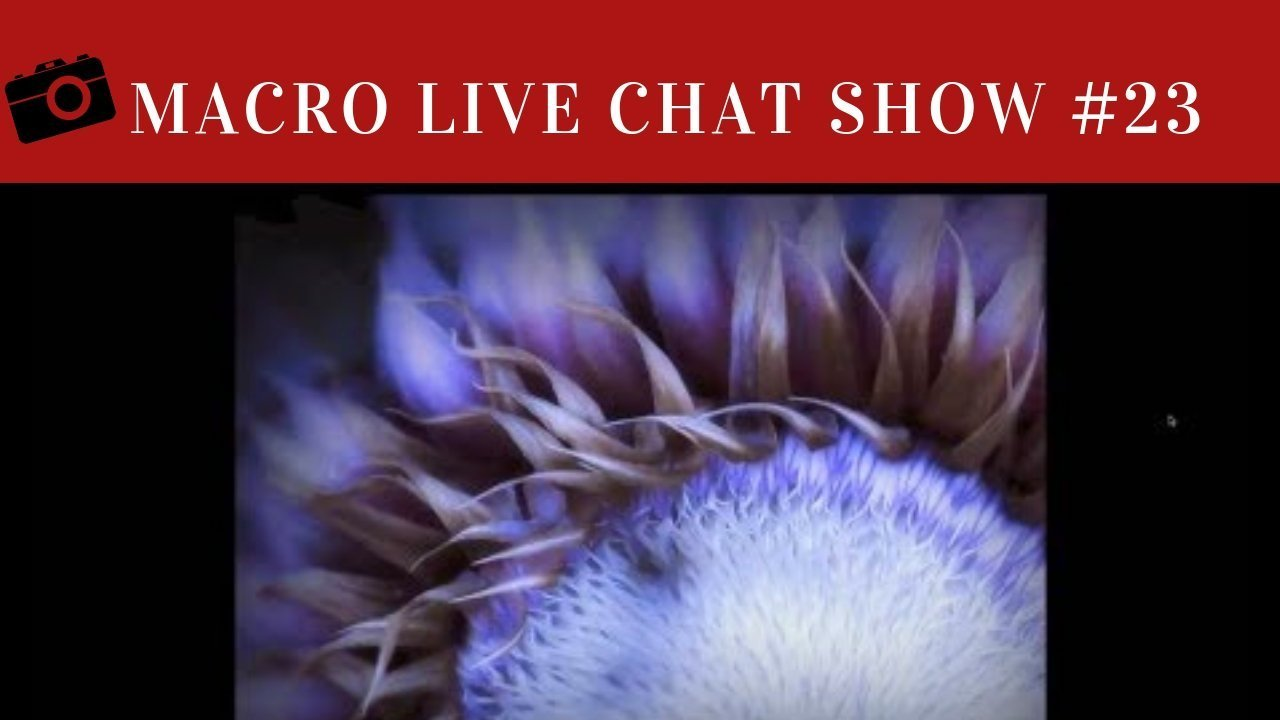 Macro Photography Live Chat #23 – Shari Miller