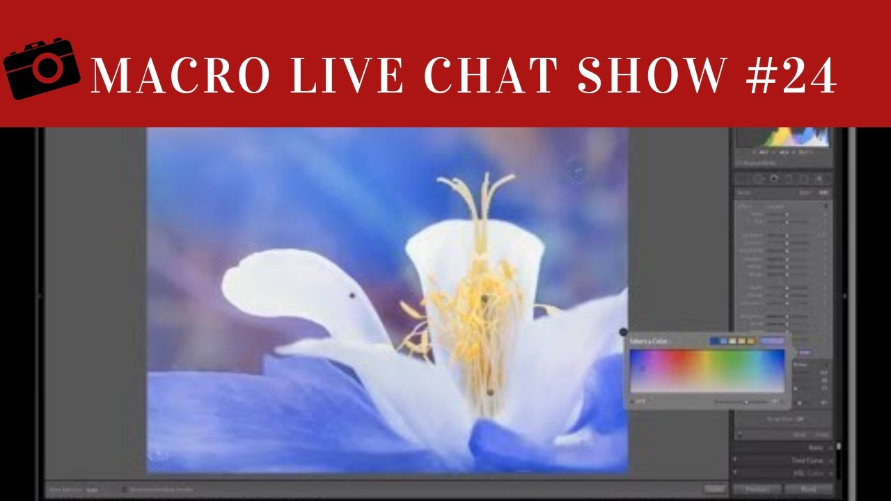 Macro Photography Live Chat #24 – Stacking