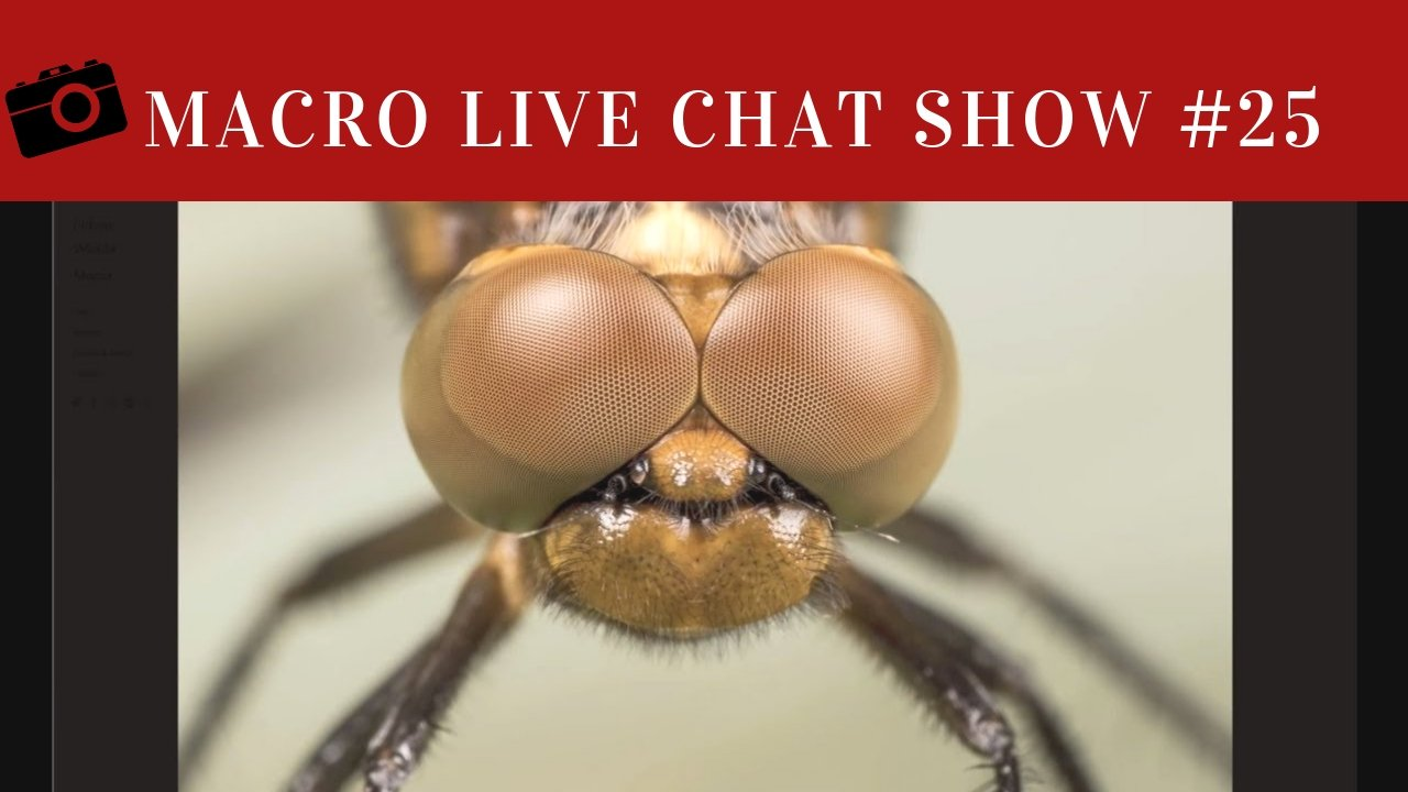 MACRO PHOTOGRAPHY LIVE CHAT #25 – Peter Bartlett