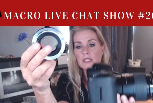 macro live chat show, show 26, janice sullivan