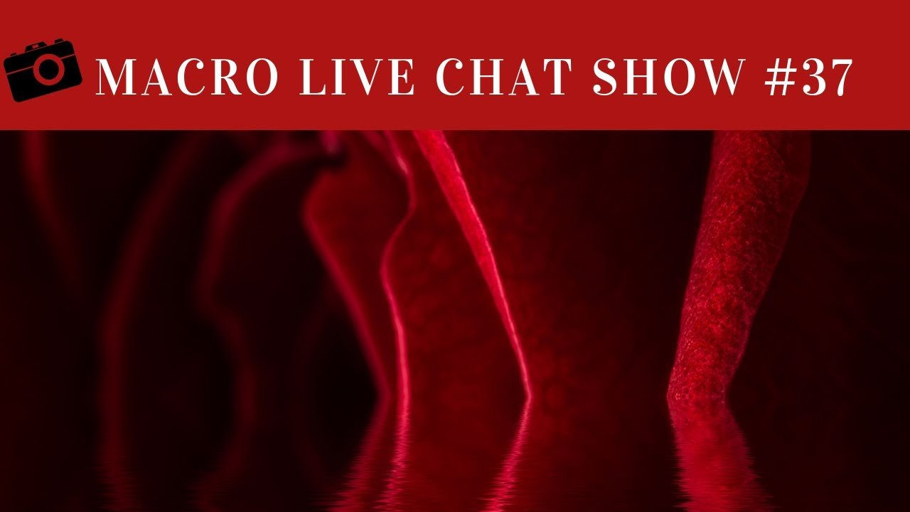 Macro Photography Live Chat #37 – Valentines Red