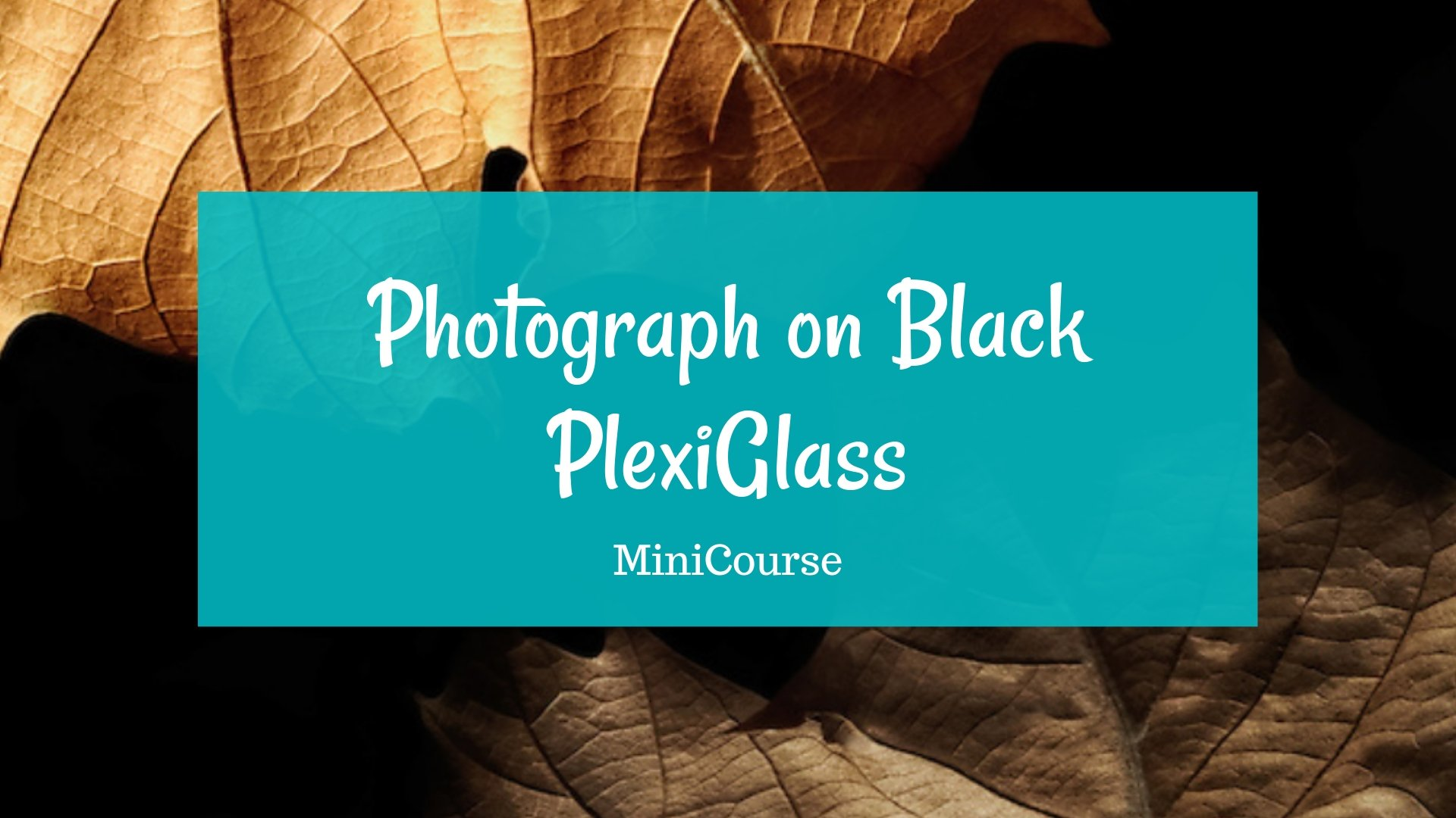 photograph on black plexiglass course
