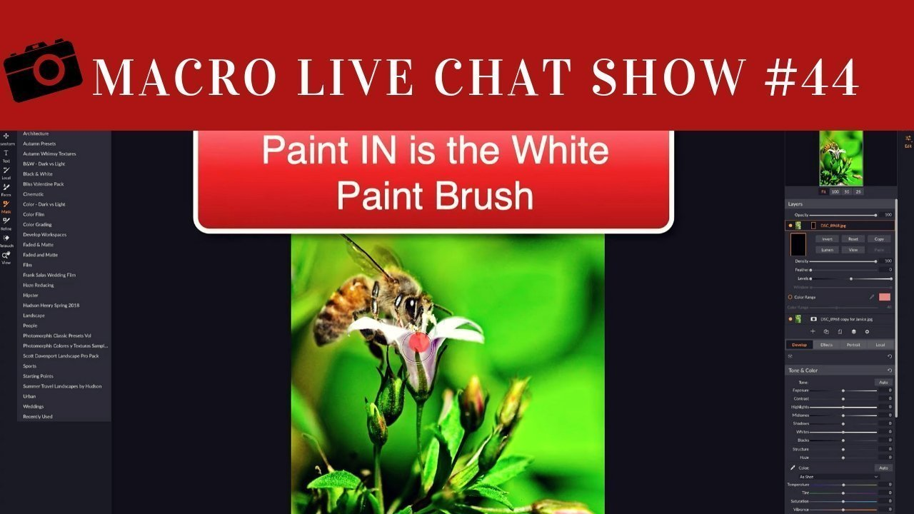 macro live chat show and on1
