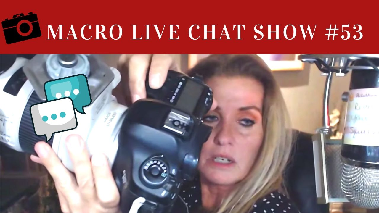 Macro Chat Live Show 53 – Giving Thanks to our Guest 2019