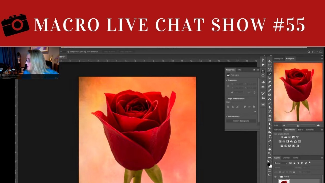 MACRO PHOTOGRAPHY LIVE CHAT SHOW #55 – Backgrounds