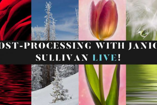 post processing with janice sullivan live