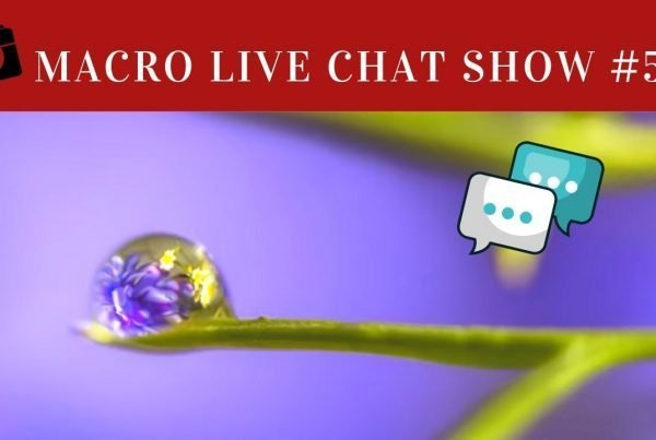 photograph in the home in themacro live chat show,