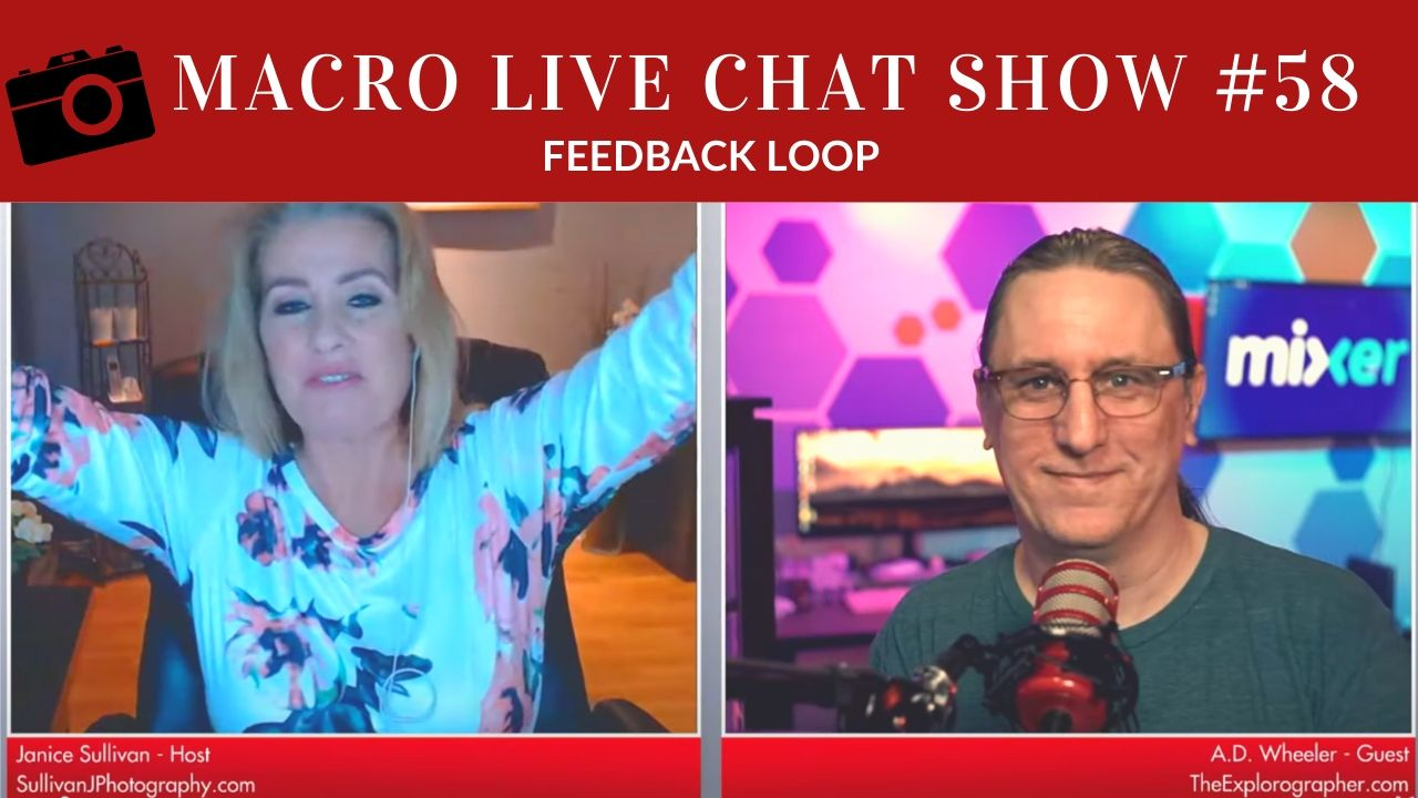 macro photography live chat show feedback loop