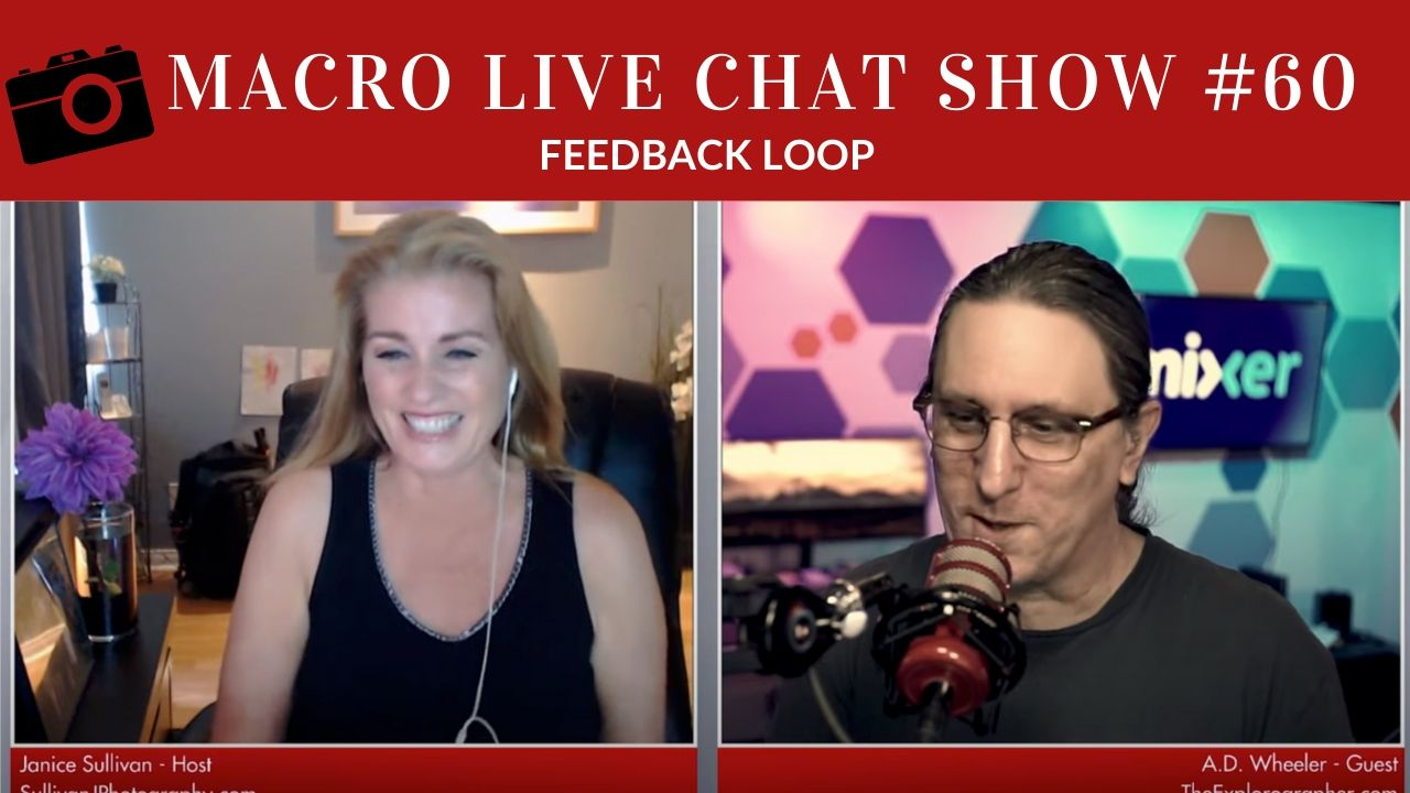 Macro Photography Live Chat #60 – Feedback Loop