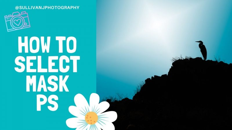 select and mask in photoshop