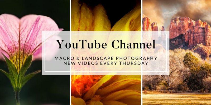 janice sullivan youtube channel