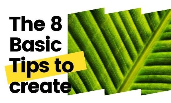 8 tips to create photographs