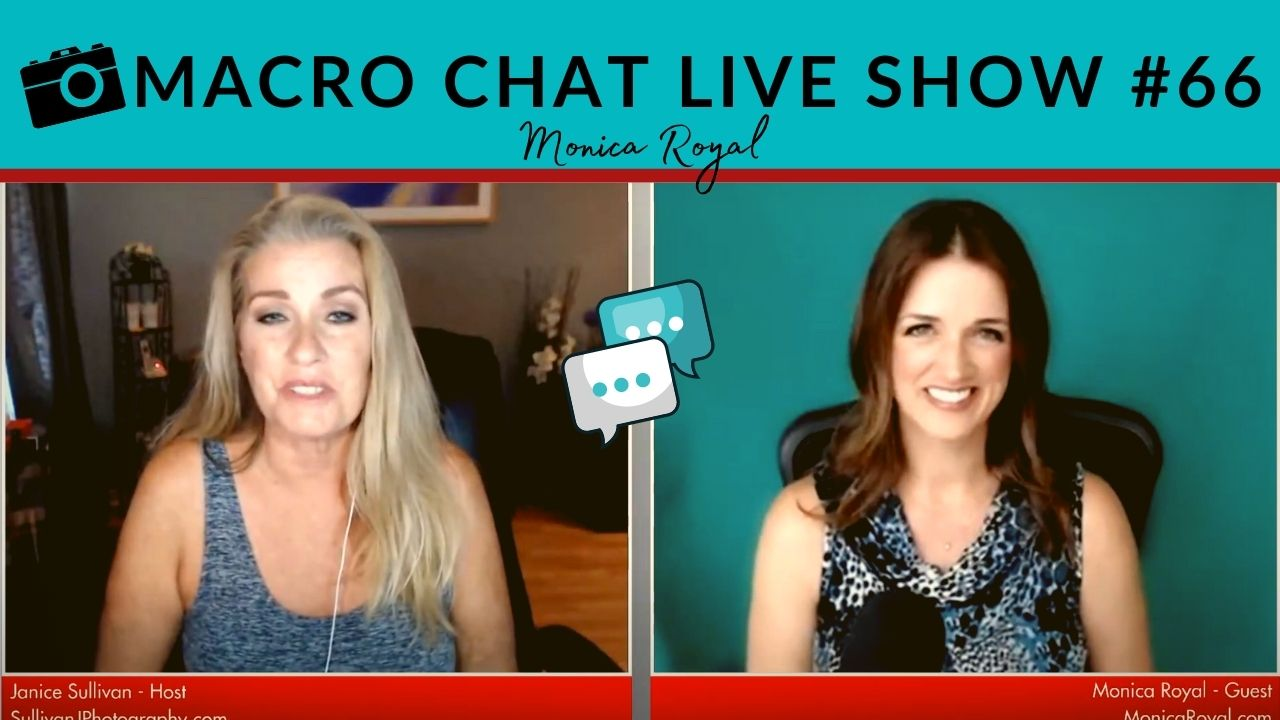 monica royal on the macro chat live show