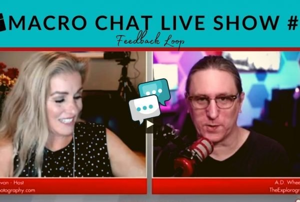 macro photography chat live show