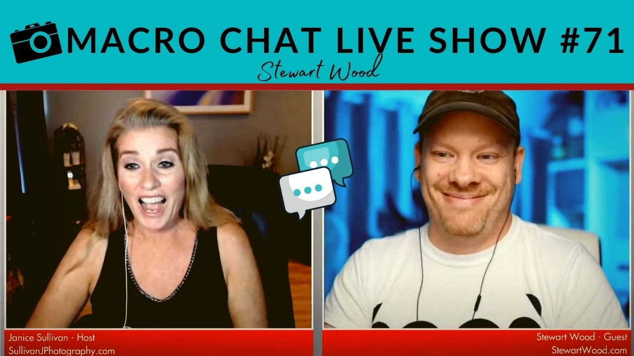 stewart wood on the macro chat live show
