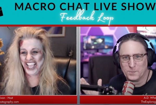 macro chat live show spooktacular