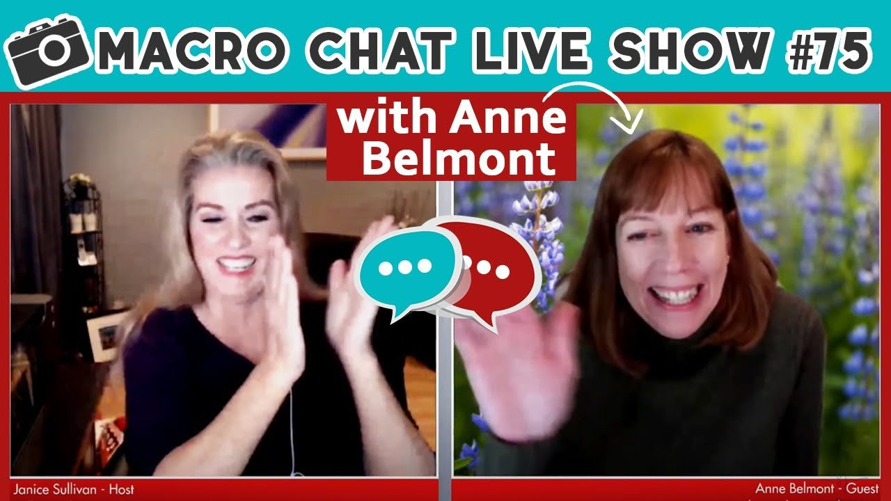 Macro Chat Show Holiday Live # 75 – Anne Belmont