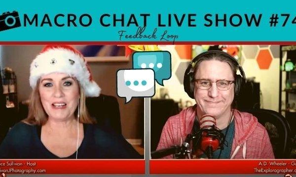 macro Chat Live show #74 feedback