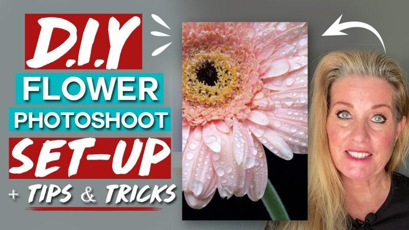 DIY flower photoshoot setup