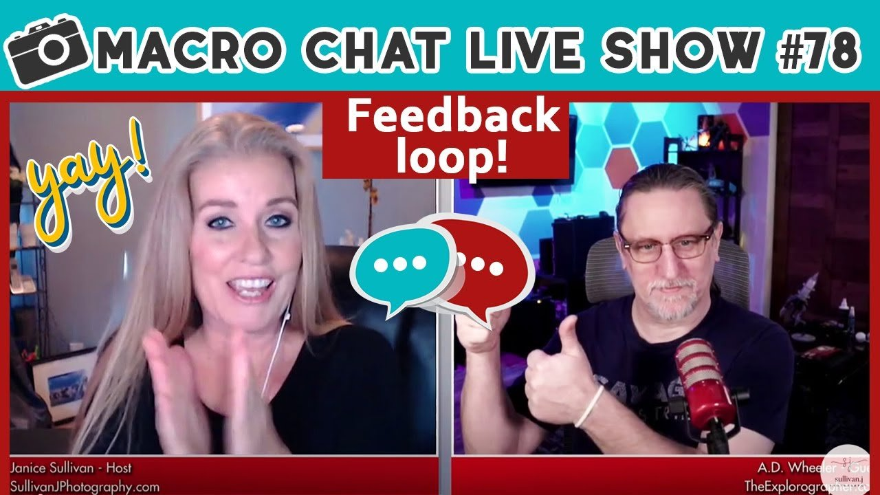 Macro Chat Live Show – Feedback Loop #78
