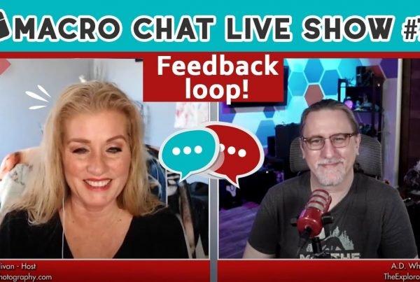macro chat show 79