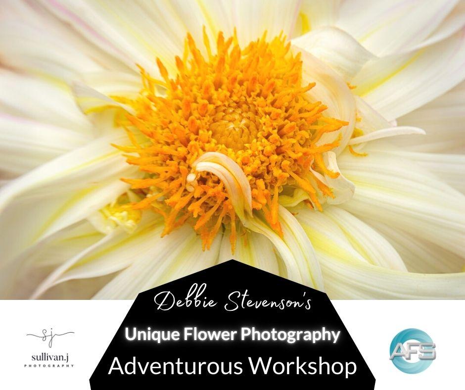 debbie stevenson unique flower photography workshop