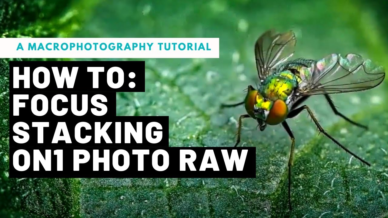 how to focus stack hand holding