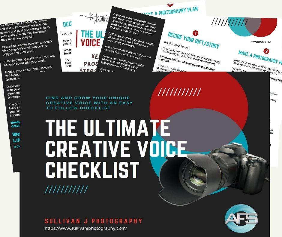 free ultimate creative vision checklist